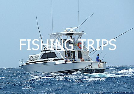 Fishing Trips Curacao