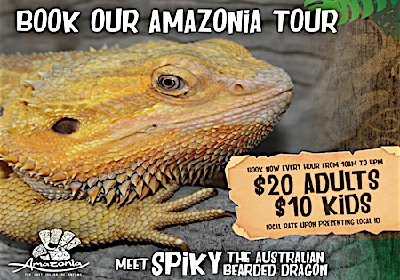 Book our Amazonia Tour for Kids